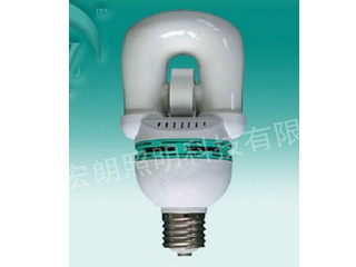 Self-ballasted induction lamp(RZHL801)