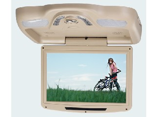 Ceiling Mounted LCD Monitor (CM1100A)