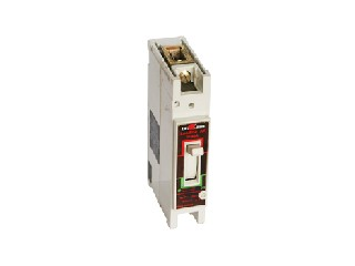 Molded Case Circuit Breaker AA-100 1P 40A
