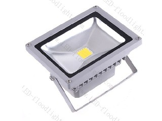 LED Flood Light 85V~265V F20WA