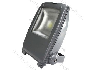 LED Flood Light 85V~265V F30WC
