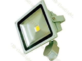 LED Flood Light 85V~265V  F20WA-PIR