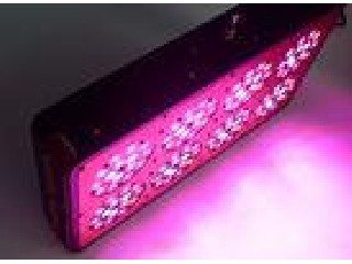 High Power Led Growth Lights 350W Full Spectrum For Medical Plants