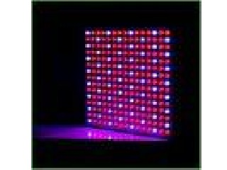 IP54 45 Watt Hydroponic Led Grow Light for greenhouse full spectrum