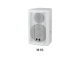 pro conference speaker M65 single 6.5 inch two-way full frequency meeting speaker