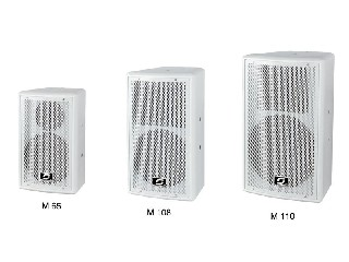 pro speaker M series single 6.5/8/10 inch two-way full frequency meeting speaker