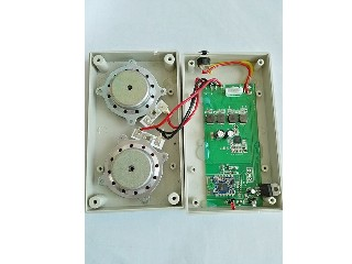 Digital bluetooth amplifier module with two sound exciters for furniture