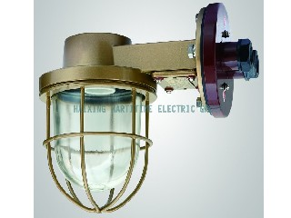 CCD9-6,CCD9-6A INCANDESCENT LIGHT