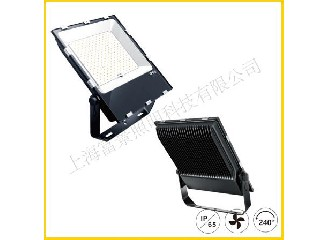 LED FLOOD LIGHT FJ-FL1X10W-XXCVX-G02