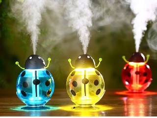 Beetle LED humidifier 260ML WY-HB-05G