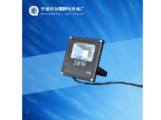 FLOOD LIGHT QG-FL10W