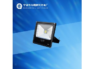 FLOOD LIGHT QG-FL30W-1