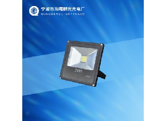 FLOOD LIGHT QG-FL20W